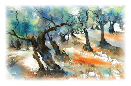 Kunstkarte - Olivenhain auf Mallorca
