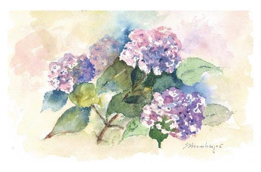 Kunstkarte - Hortensie