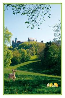 Foto-Kunstkarte Coburg - Osterhase im Veilchental