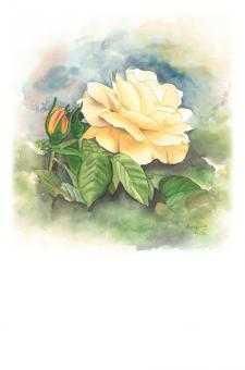 Kunstkarte - Gelbe Rose